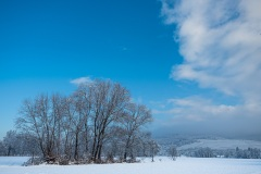 Wintertag im Schnee